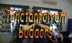 Tánciskola Budaörs - Tánctanfolyam Budaörs